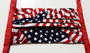 Pleated Mask, Old Glory with Red Ties